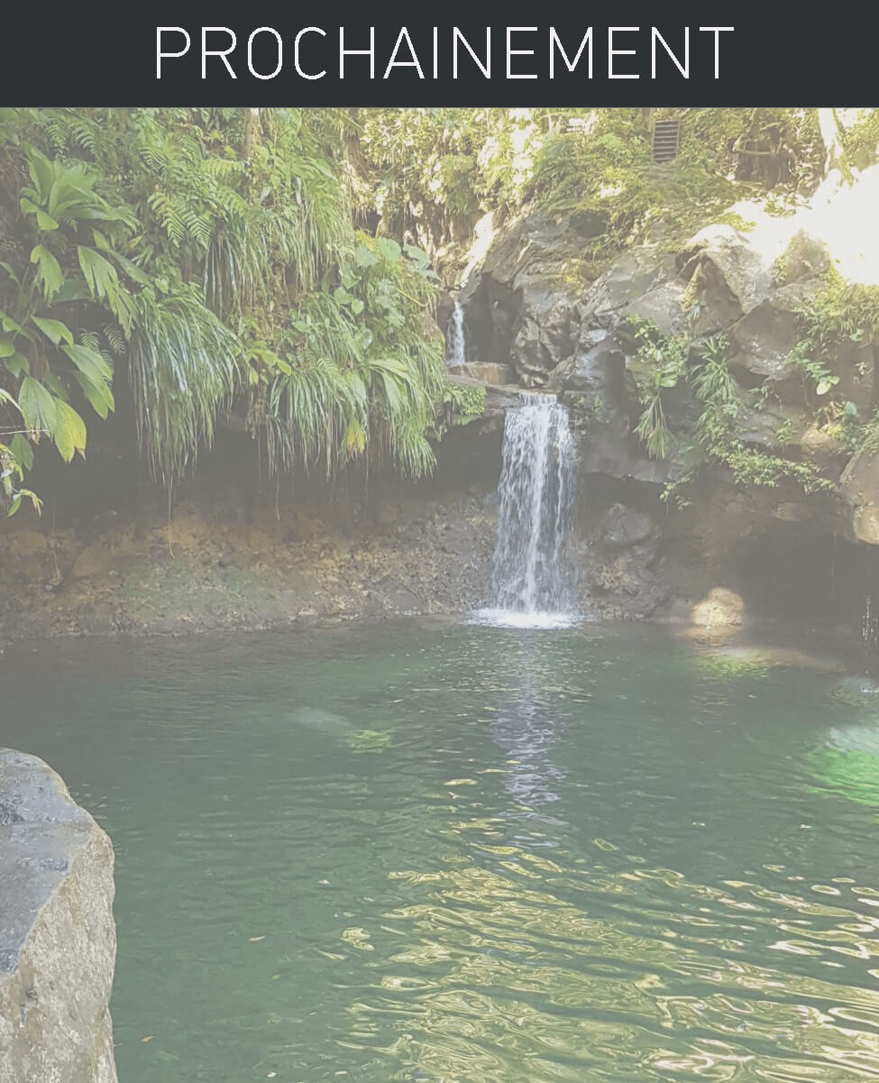 photo d'une cascade en guadeloupe